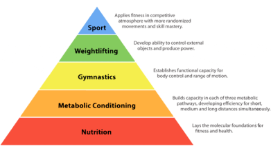 crossfit-hierarchy