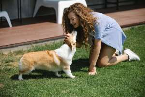 smiling woman stroking welsh corgi pembroke Finding happiness with a pet