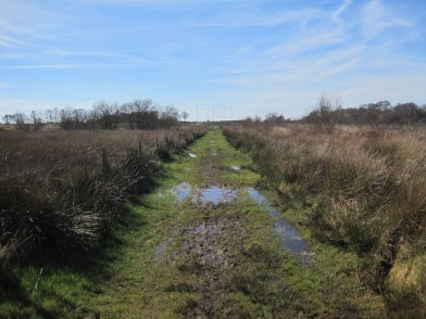 The track towards Rogersceugh Crossing 2017
