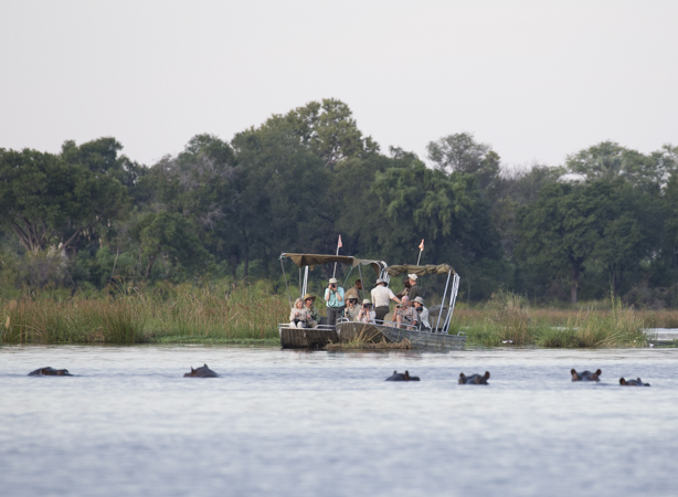 Safari boat and hippos