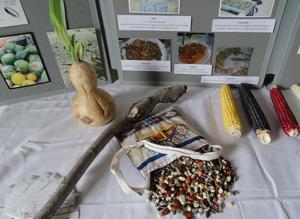 Natwani Coalition image of Hopi display