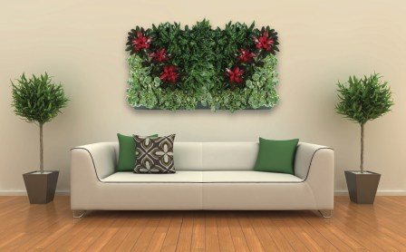 Plant Portait 1 copy