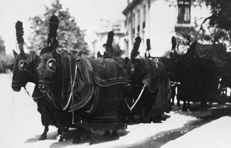 December 28, 1913