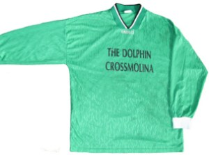 dolphin1jersey_small