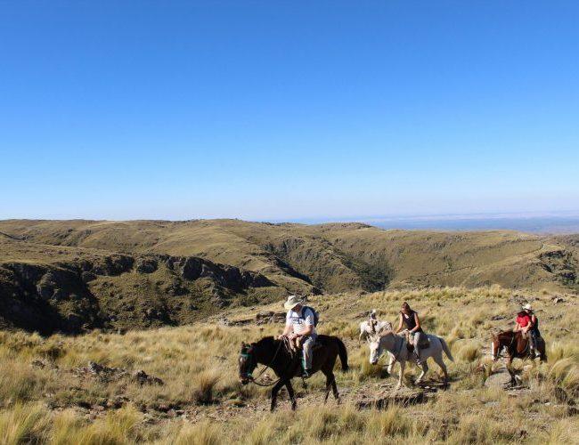 Horse trekking Pampas