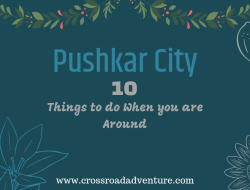 Pushkar City Guide - things to do
