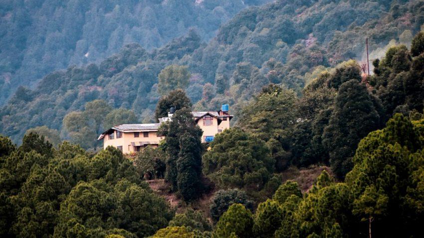 Dharmalaya Institute