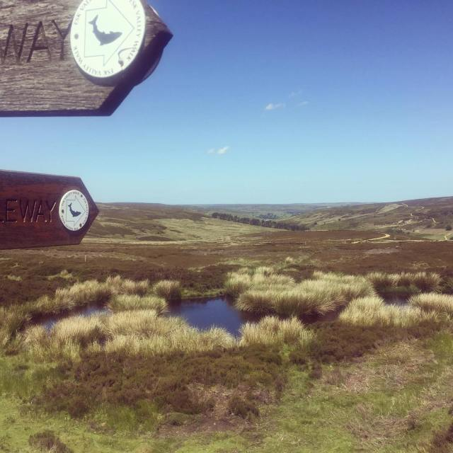 Mountain biking the Esk Valley Way over Blakey Moor Beautifulhellip
