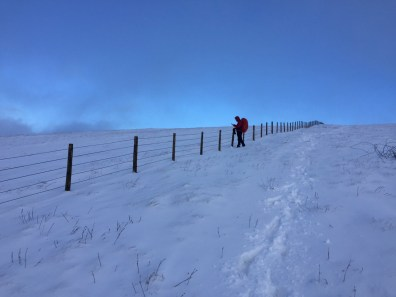 After battling the blizzard we had handrailed the fence to the top of Branstree