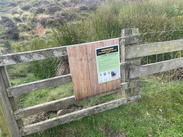 Hanging Stone Leap Race 2021 - Beware of ticks on Kildale Moor