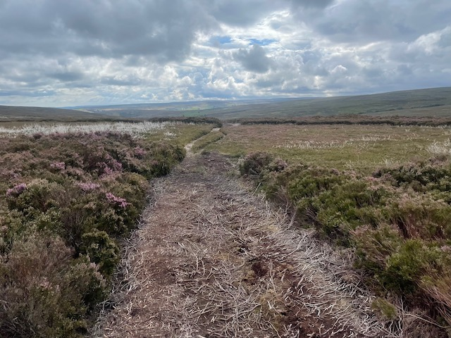 Hanging Stone Leap Race 2021 -Kildale Moor