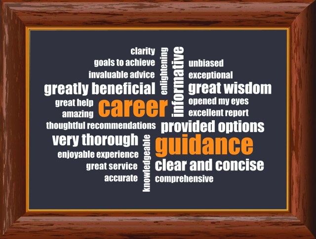 WHAT DO CLIENTS SAY ABOUT THE CARRER GUIDANCE PROGRAM?