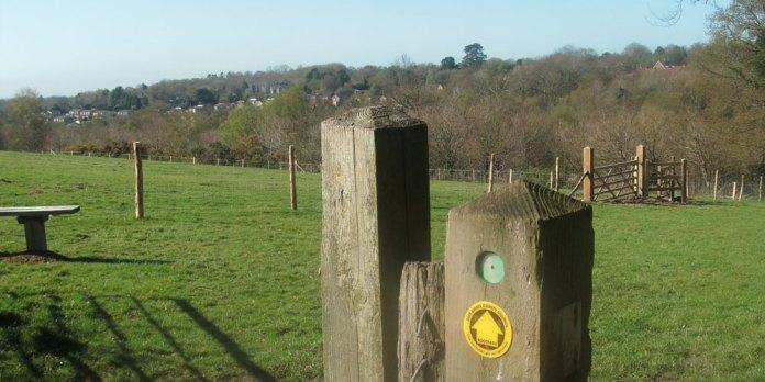 Palesgate Meadow