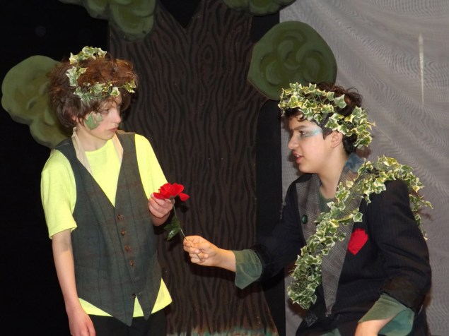 Oberon get's his servant Puck to find a special flower whose jouice makes the person fall in love