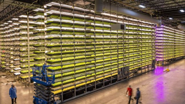 Hydroponic farming provides several examples of crowdfunding for agriculture