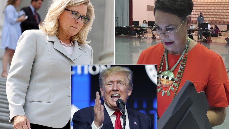 2022 Wyoming House Race Polls: Liz Cheney on shaky ground.
