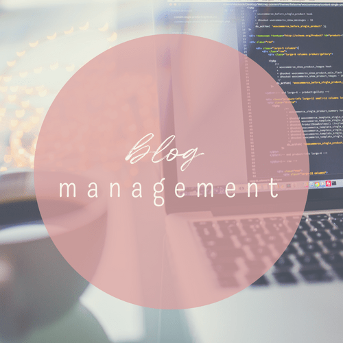 work with us! we offer blog management services.