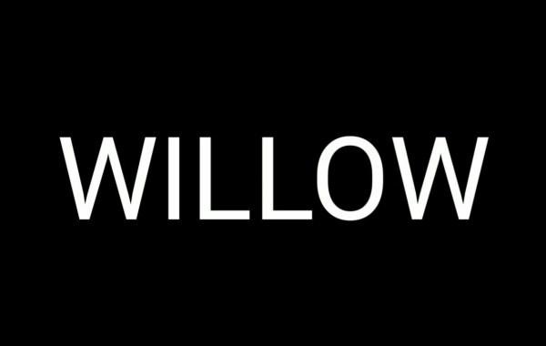 Lil Xan – Willow Lyrics