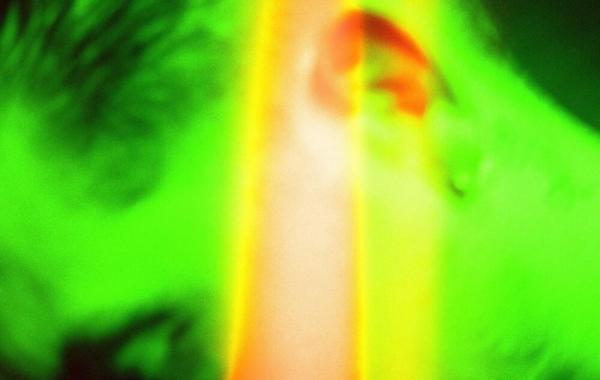 G-Eazy - Lazarus lyrics