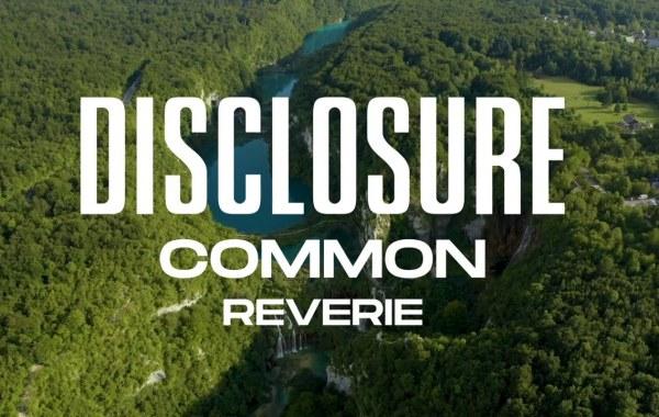 Disclosure & Common - Reverie lyrics