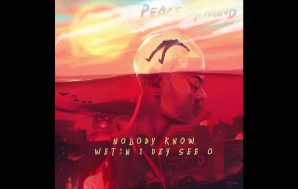 Rema - Peace Of Mind Lyrics