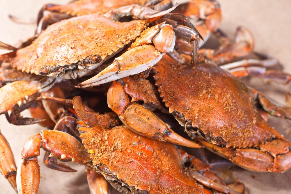 seasoned Large male blue crabs