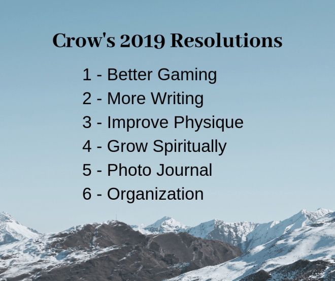 2019 resolutions of famous blogger