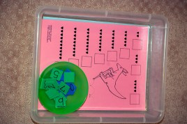 math, number sense tray