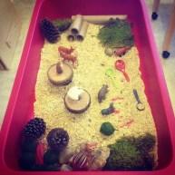 """""""Forest of Fun"""" sensory bin"""