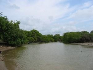rio hobo