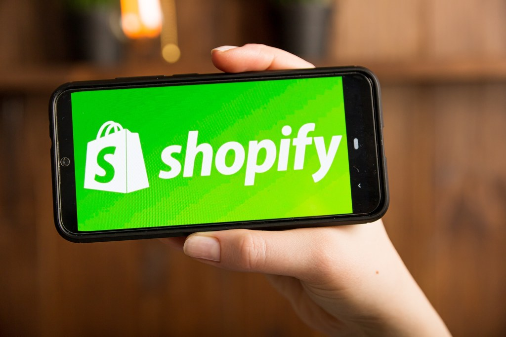 Profitable Shopify Store