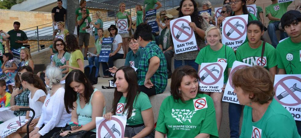 Rally to Ban the Bullhook