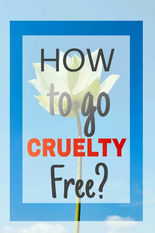 Cruelty Free Beauty Guide