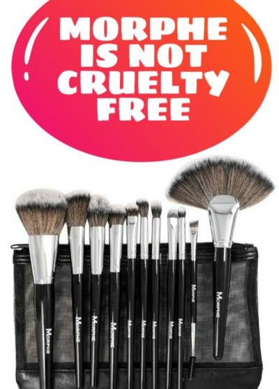 Morphe Is Not Cruelty Free – Uses Badger Fur For Brushes