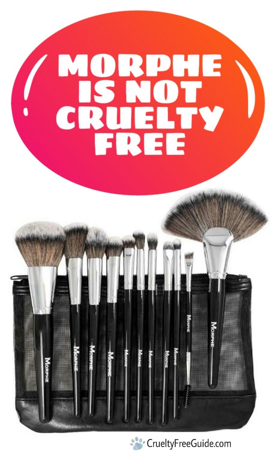 Morphe not cruelty free