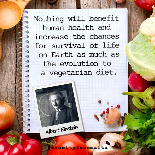 img-vegmonth-alberteinstein-quote