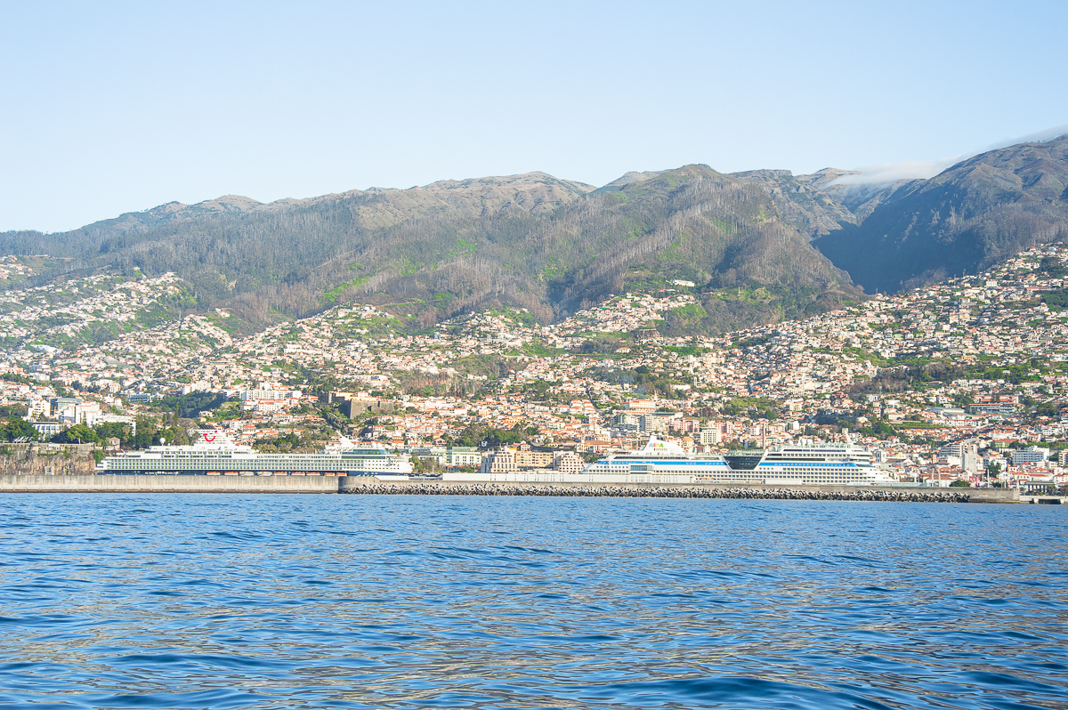View on Madeira port