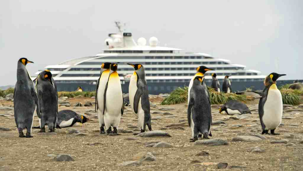 Scenic Eclipse wins 'Expedition Cruise Initiative of the Year' at Seatrade Cruise Awards | 20