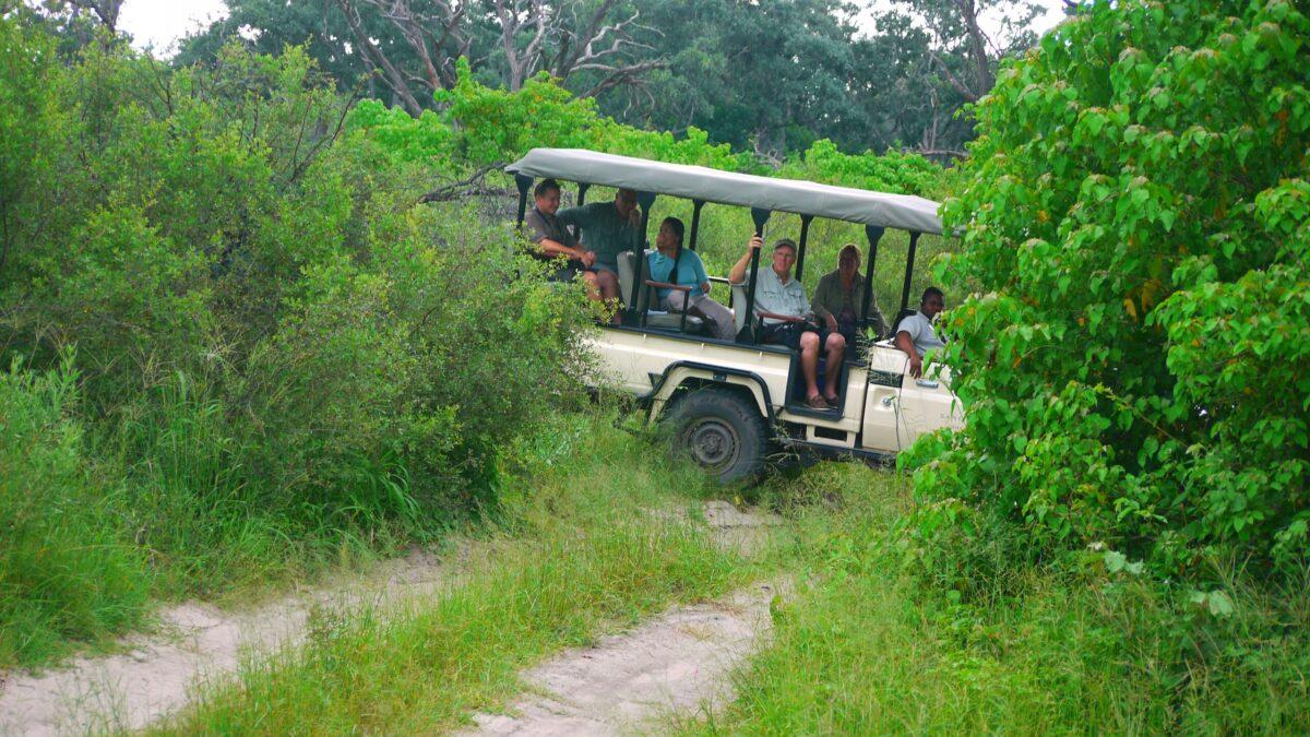 Off-road kørsel i Botswana