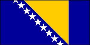 Hiring Partners in Bosnia