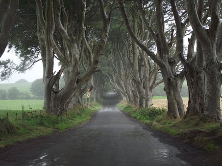 Dark Hedges, one of the most photographed Game of Thrones locations in Northern Ireland