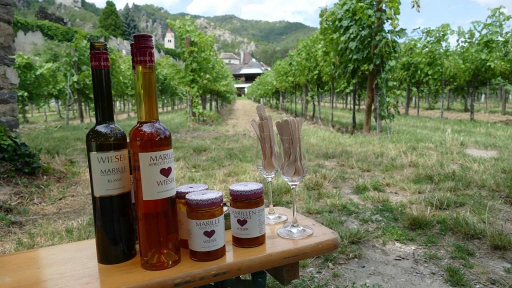AmaWaterways apricot excursion durnstein