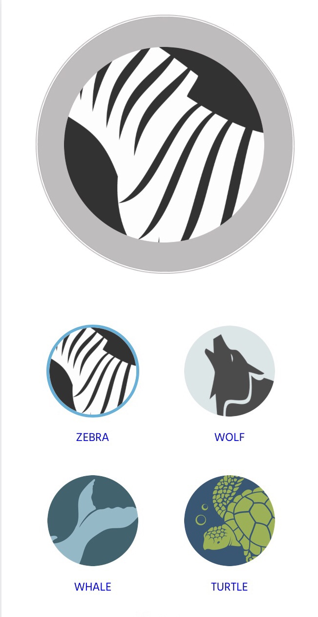 Animal Ocean Medallion designs
