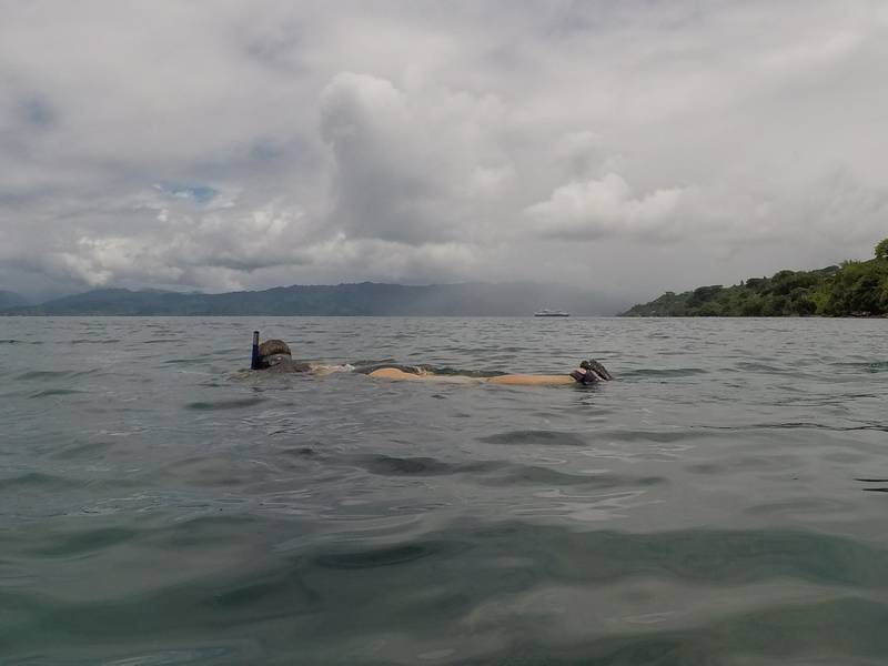 Snorkeling at Jean-Michel Cousteau Point