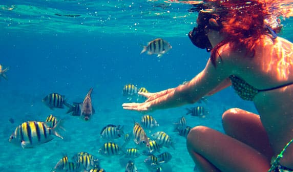 Cozumel Palancar Snorkeling Tour