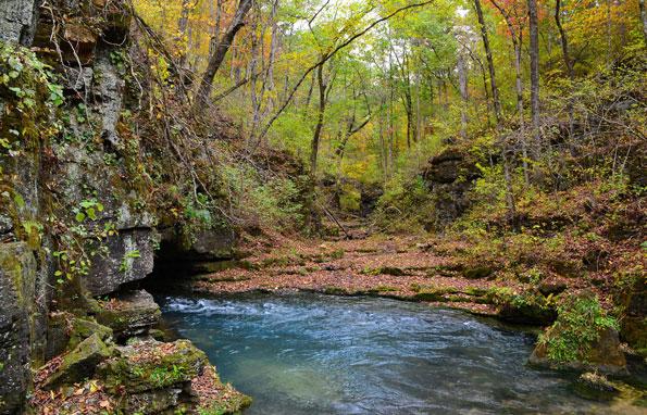 Mark Twain National Forest in Missouri