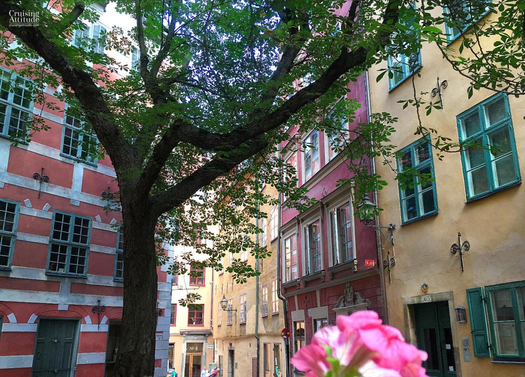 Under the Chestnut Tree in the Old Town of Stockholm - Cruising Attitude Sailing Blog | Discovery 55
