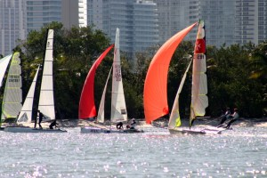 Wednesday morning races in Biscayne Bay