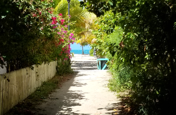 Path to the beach in Placencia