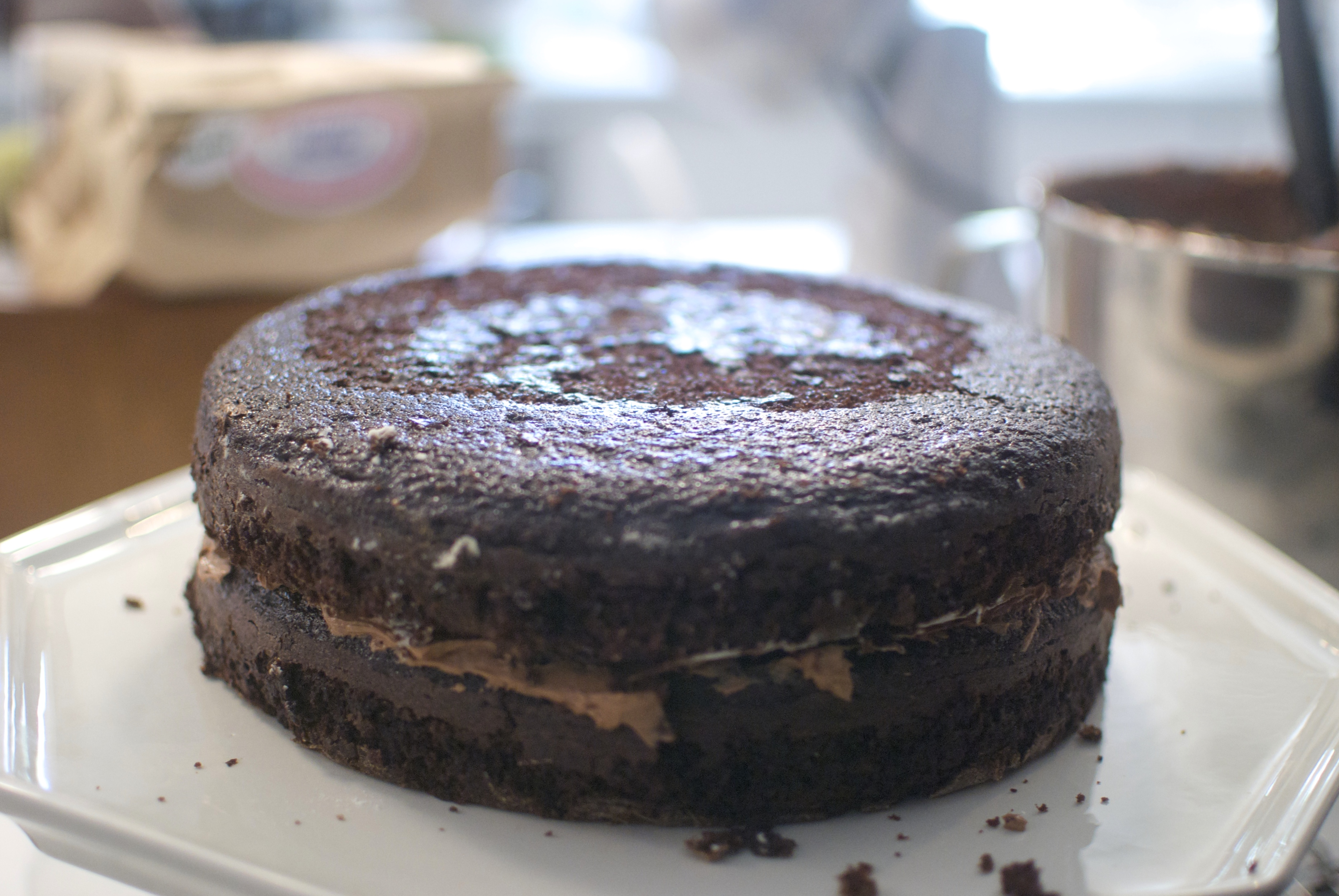 Best Chocolate Cake. Ever. – Crumbs & Nibbles